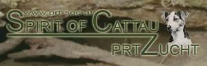 Zu Spirit of Cattau